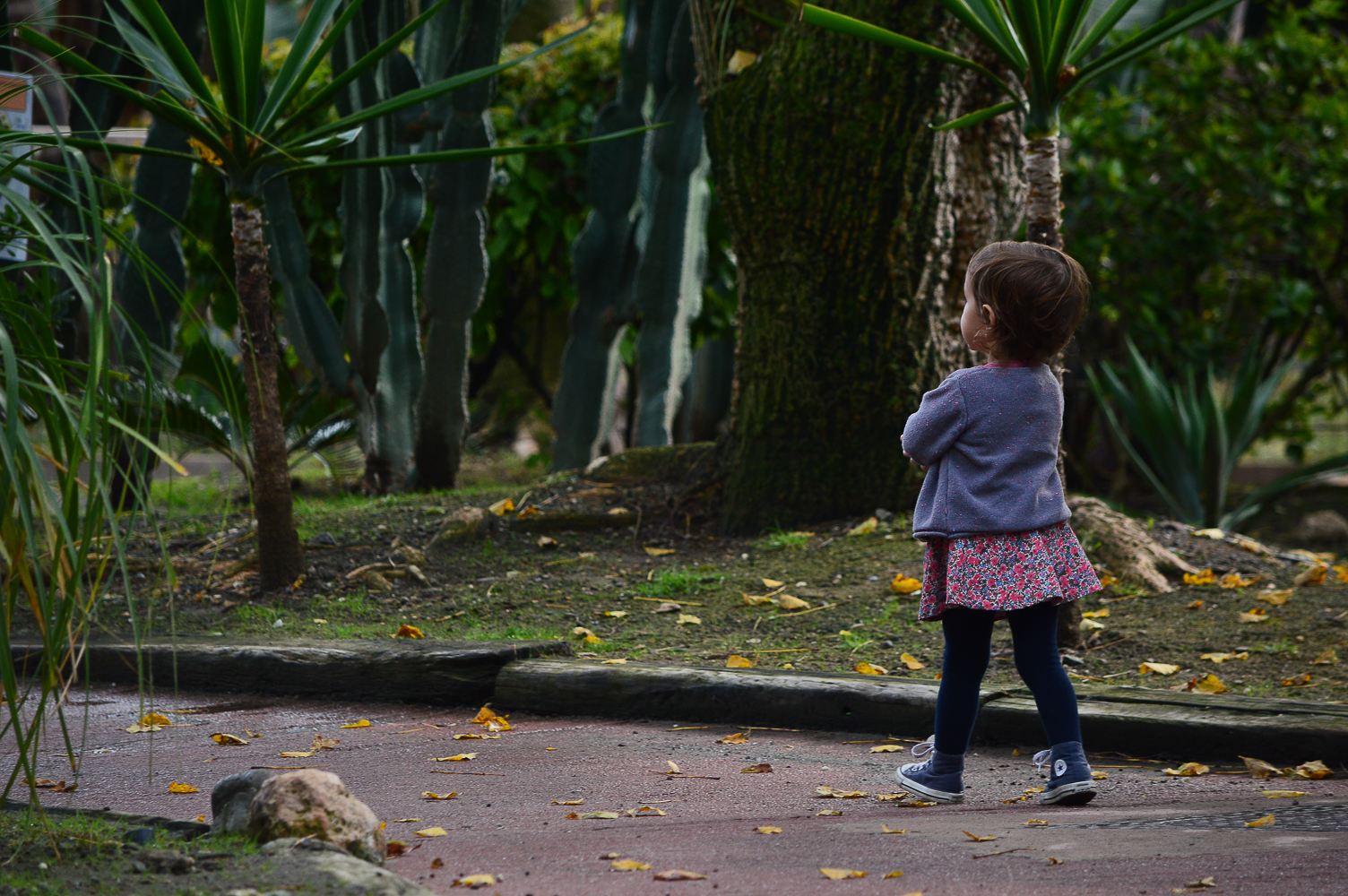 2015-12-zoo-7630