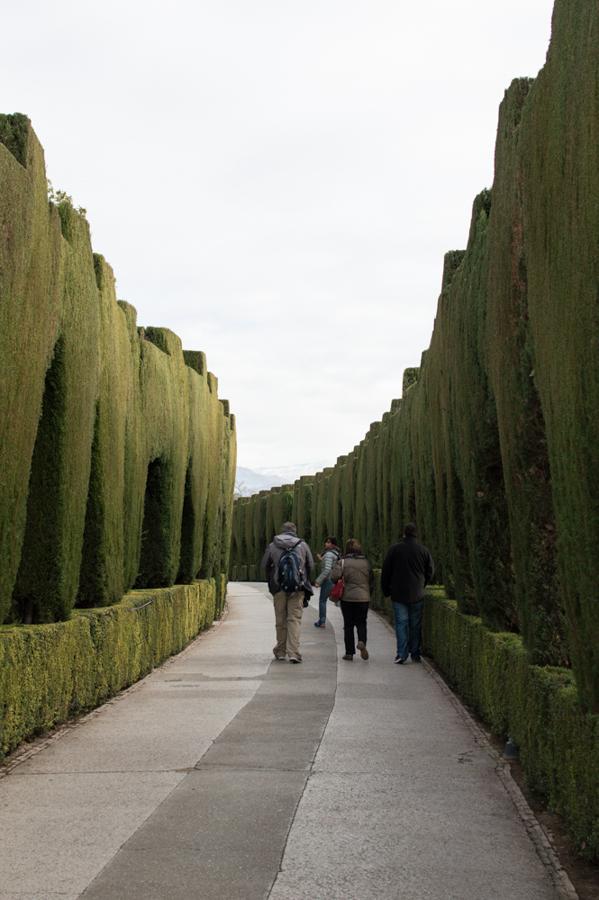 Alhambra-9058
