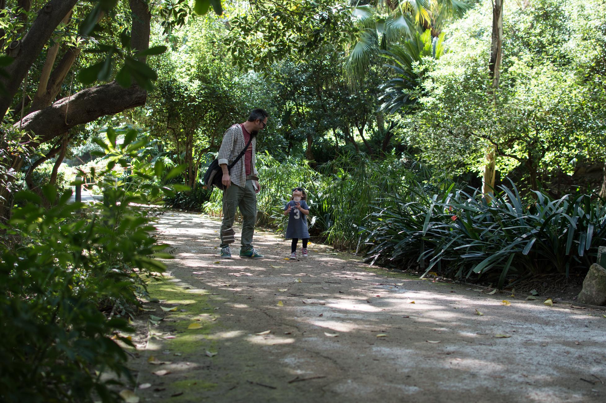 Botanical Garden Malaga